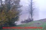 Alluvione12-39