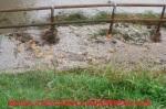 Alluvione12-41