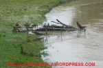 Alluvione12-47