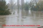 Alluvione12-13