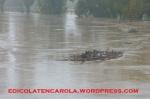 Alluvione12-17