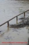 Alluvione12-24